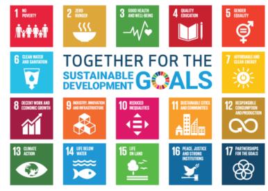 Duurzame ontwikkelingsdoelen